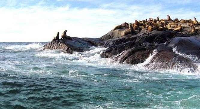 Lizzies Cove Island, Canada