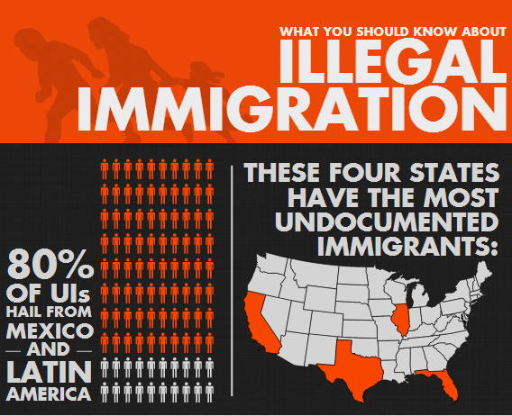 how to call immigration on an illegal