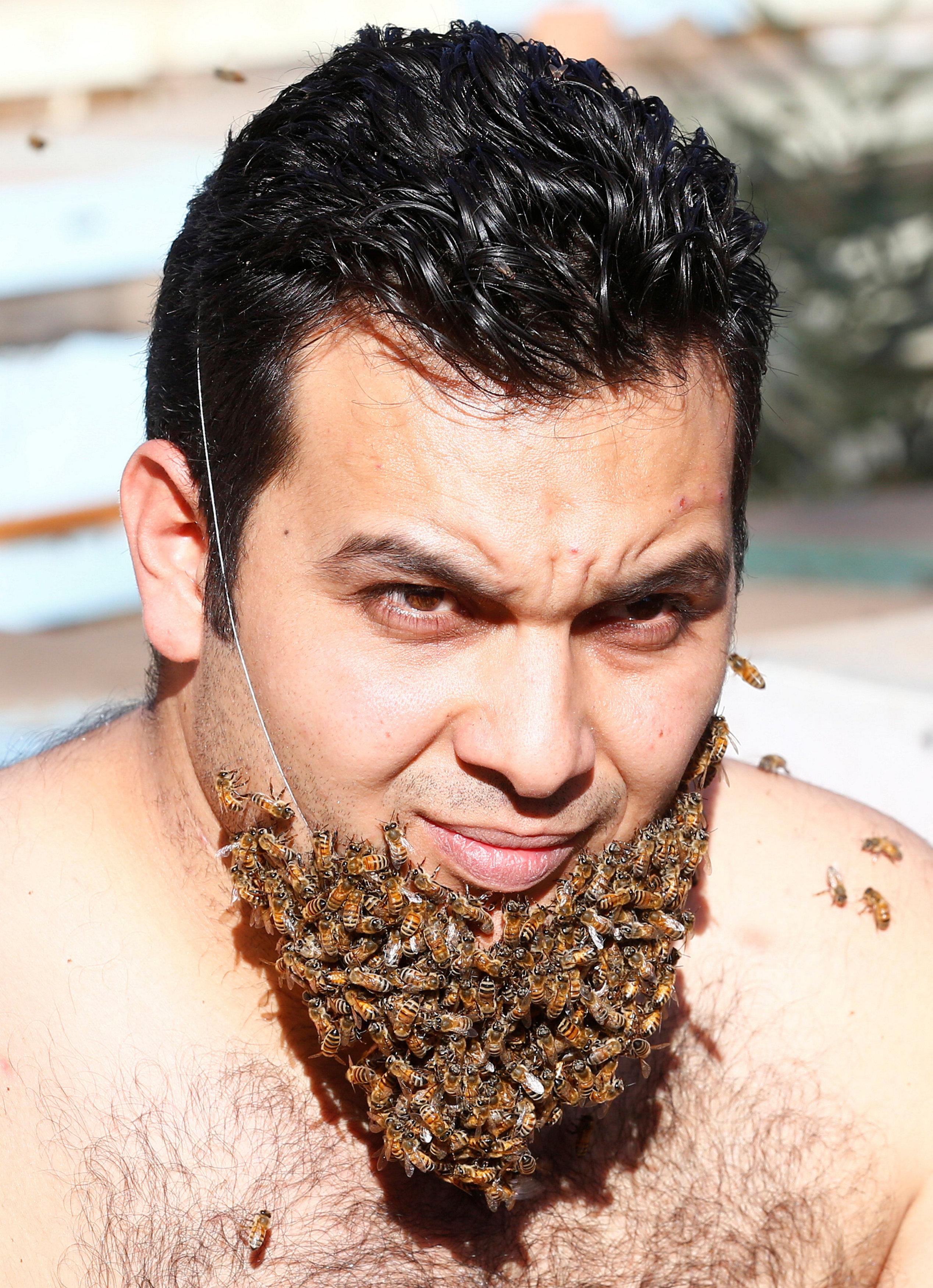 Egyptian men pic 100