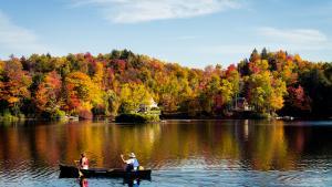 1) Vermont