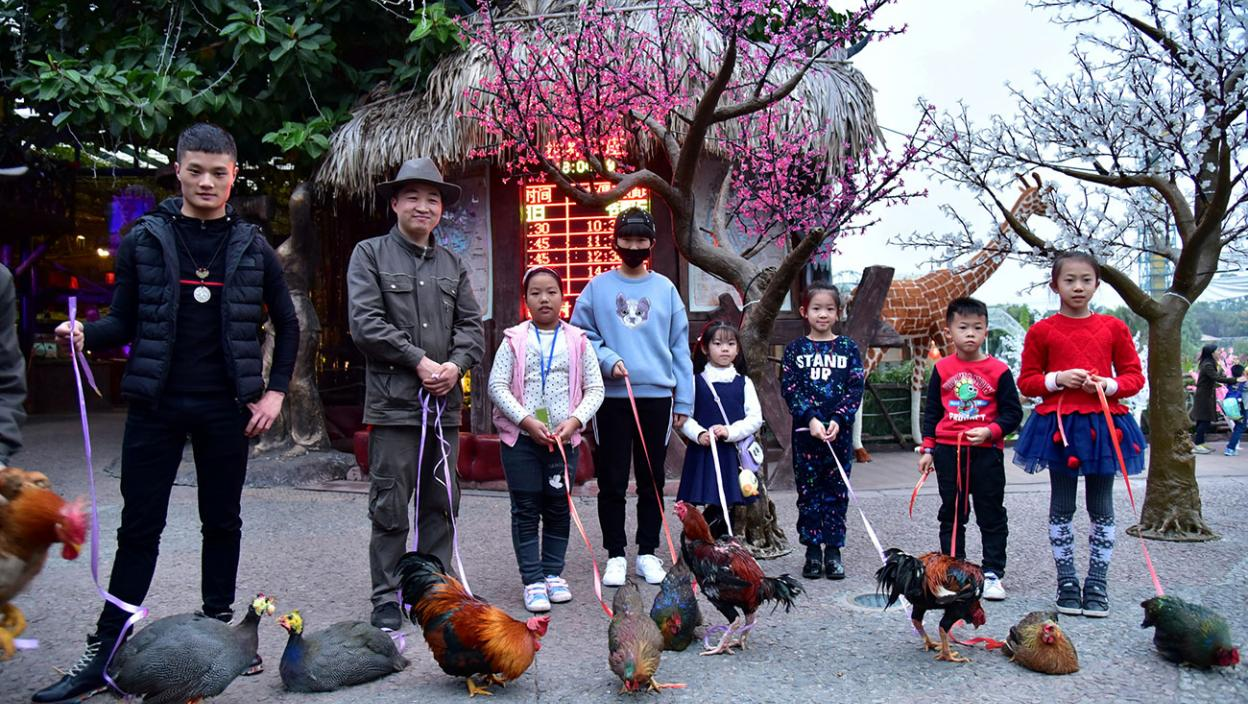 Owners pose with their roosters during a rooster beauty contest ahead of the upcoming Chinese Lunar New Year of Rooster in Shunde