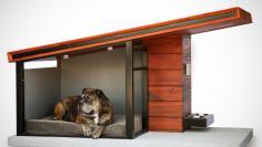 Dog Haus - $3,650