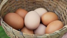 Refrigerated Fresh Eggs