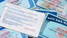 Undated handphoto of counterfeit social security cards that were confiscated by Immigration and Customs Enforcement agents