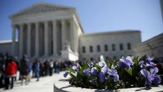 Spring flowers bloom in front of U.S. Supreme Court after split 4-4 decision in first major case after Scalia death in Washington