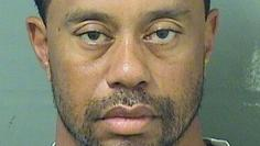 Woods appears in a booking photo released by Palm Beach County Sheriff's Office in Palm Beach